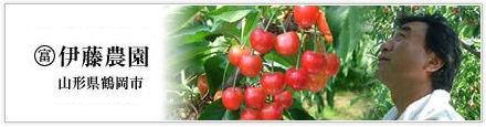 cherryitonoen