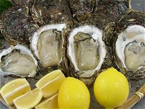 天然岩牡蠣盛り付け