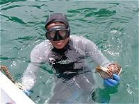 天然岩牡蠣は素潜り漁2