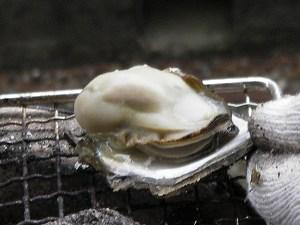 天然岩牡蠣を焼き牡蠣に2